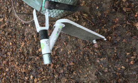 A budapesti parkokban is állandó tájelemmé válik az elektromos roller